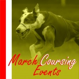 SOFA Dog Wear - March Coursing events