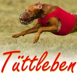 SOFA Dog Wear - 23. - 24. 5. 2015 Tüttleben (De)