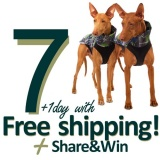 SOFA Dog Wear - 7+1 day with free shipping!
