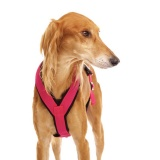 SOFA Dog Wear - New - sports harness in pink!