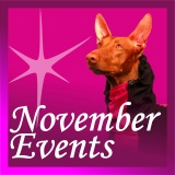 SOFA Dog Wear - November Events