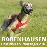 SOFA Dog Wear - Deutscher Coursingsieger 2016