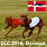 SOFA Dog Wear - ECC 2018, June 22.-24. 2018   Nørresundby,  Denmark