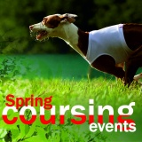 SOFA Dog Wear - Our summer events