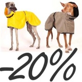 SOFA Dog Wear - 4 days with Noe and Zoe Raincoats