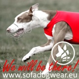 SOFA Dog Wear -  Upcoming events