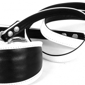 Leather collars and leads DUO